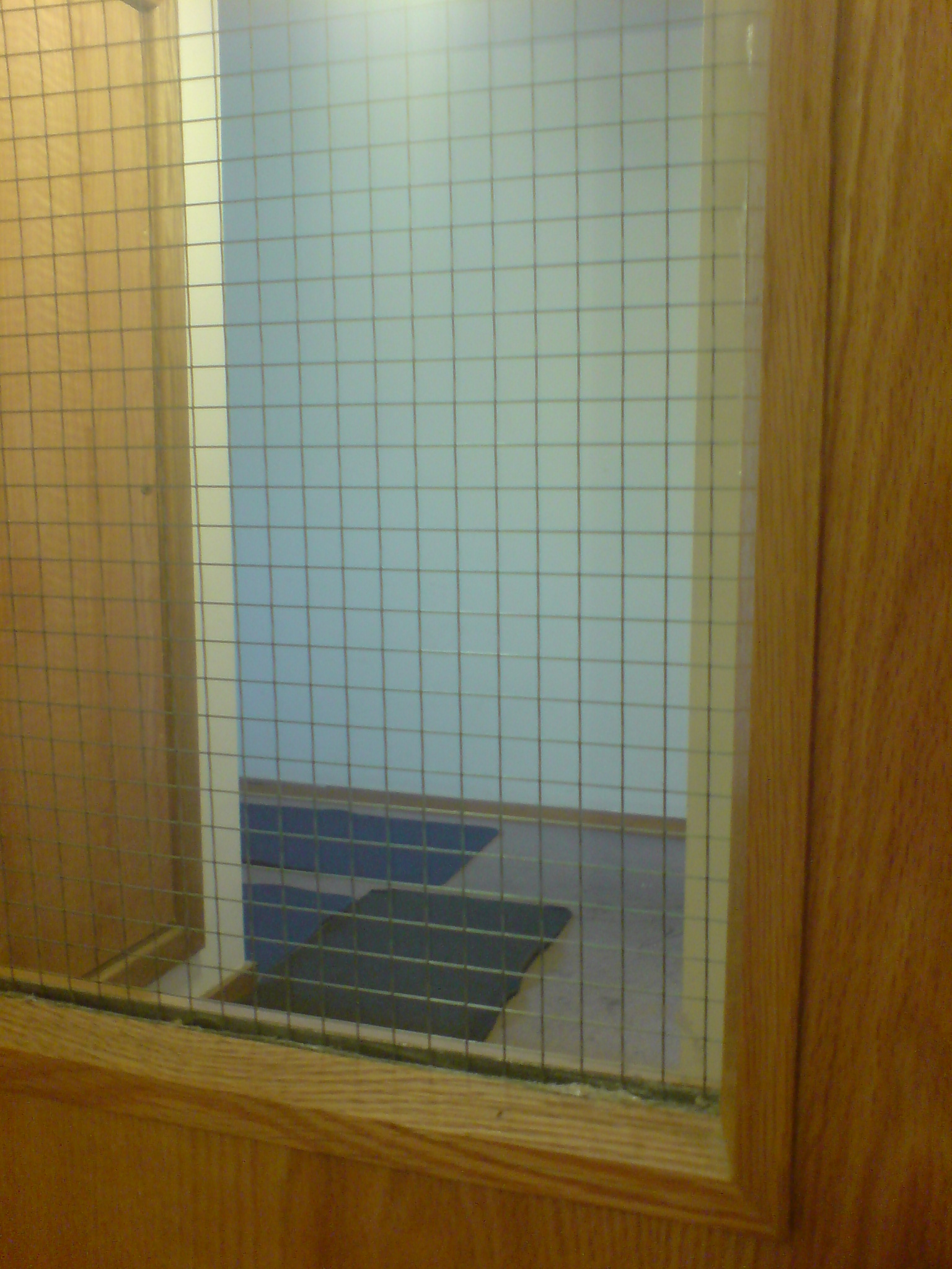 Comfortable Wire Reinforced Glass For Doors Gallery - Electrical ...